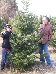 Family Tradition Cutting down your Christmas Tree